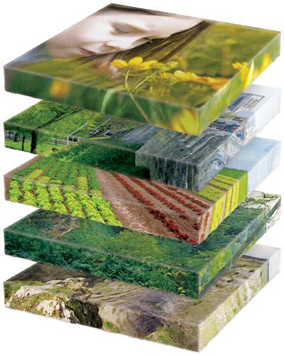 landscapeplanning
